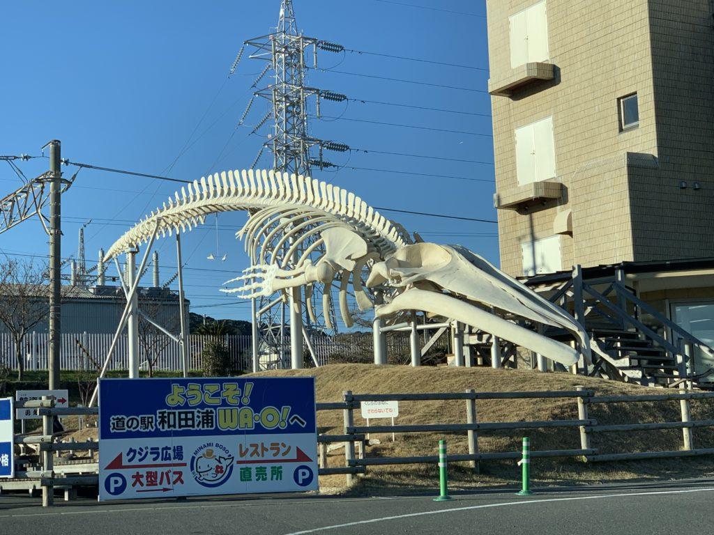 道の駅WAO!