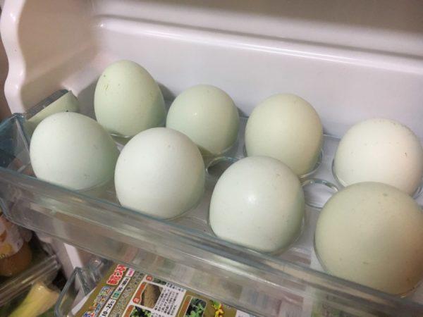 アローカナの卵きみつ