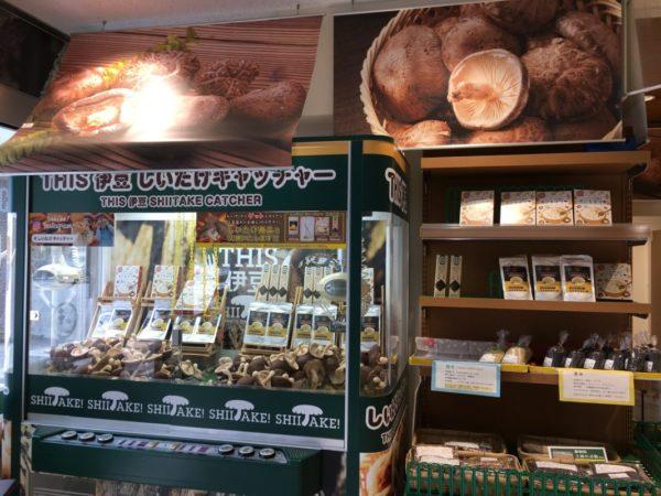 道の駅vs村の駅伊豆のへそ店@静岡【しいたけキャッチャー】