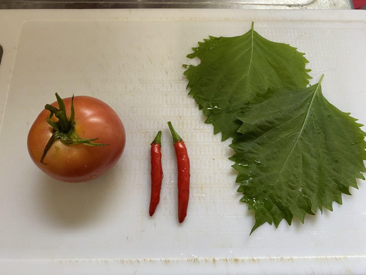 家庭菜園収穫8月