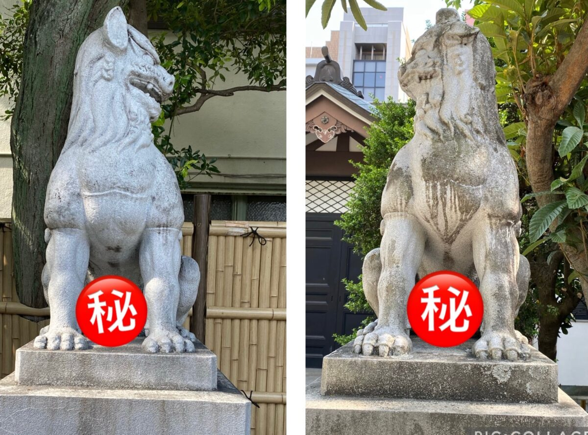 鳥越神社&おかず横丁@東京【…ご立派。】